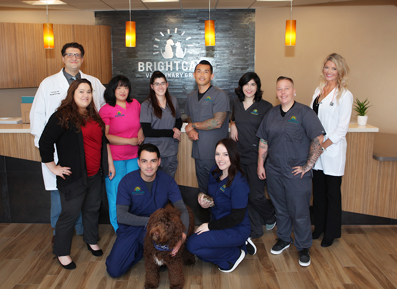 Animal Neurology Staff - BrightCare Animal Neurology & Imaging